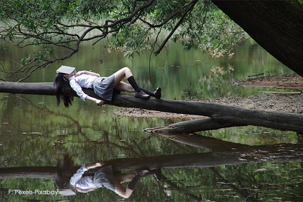 Guter Schlaf auf einem Baumstamm über dem Wasser