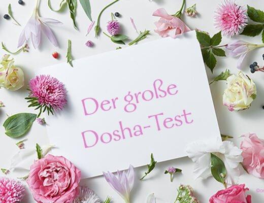 Der große Dosha-Test