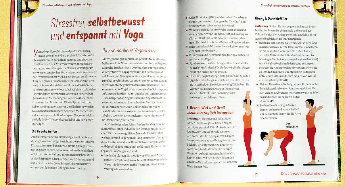 buch ayurveda gegen stress holzfäller yogauebung