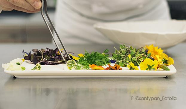 frisch rohkost salat
