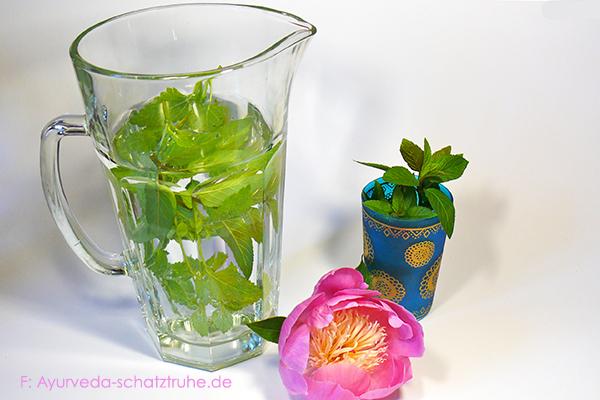 minzwasser im glas mit frischer minze